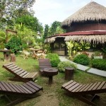 AMAZON TURTLE LODGE Packages